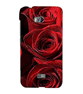 Red Roses 3D Hard Polycarbonate Designer Back Case Cover for Micromax Bolt Q336