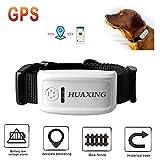 HUAXING Tracker GPS pour Animaux de Compagnie, Suivi de l'application et GPS en Temps réel, léger et imperméable, pour Chiens/Chats/Animaux domestiques,Black