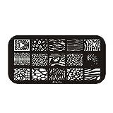 Perfect Summer 1pcs Plaque de Tampons Vernis Stamping Nail Art Image Timbre 6X12 cm #BCN-004