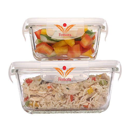 Femora Borosilicate Square Glass Food Container with Air Vent Lid, 300ml, 500ml(Transparent) - Set of 2
