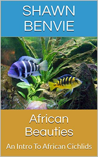 African Beauties: An Intro To African Cichlids (English Edition) (Fisch African Cichlid)