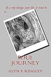 Soul Journey (The Serpentine Myth Book 1)