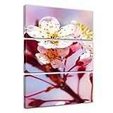 Bilderdepot24 Kunstdruck - Apfelblüten - Bild auf Leinwand - 60x90 cm dreiteilig - Leinwandbilder - Bilder als Leinwanddruck - Wandbild