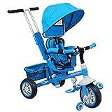 Dreirad Schiebefahrzeug Blau 55x100x105cm