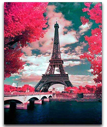 CYBAMBOO Quadratmeter Diamant Malerei Kreuzstich Eiffelturm Landschaft Voller Runder Diamant Mosaik Frankreich Paris 5D Diamant Stickerei Blüten 30 * 40cm (Kreuzstich-frankreich)