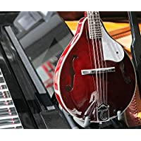Tanglewood TWM T WRP Union Series - Mandolina eléctrica, color rojo
