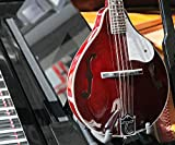 Tanglewood Union Series-Mandoline-Rouge-T WRP TWM