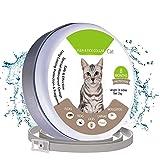 Chucalyn Floh-und Zecken Kragen für Katzen und Kleine Hunde, floh-und Zecken Prävention, ungiftig und Wasserdicht, 13 Zoll Einstellbar, 8 Monate Schutz