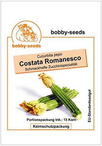 Bobby-Seeds Zucchinisamen Costata Romanesco Portion