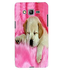 ColourCraft Cute Puppy Design Back Case Cover for SAMSUNG GALAXY GRAND PRIME G530H