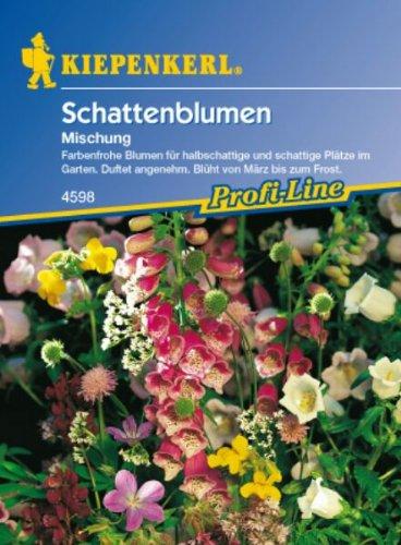 Schattenblumen 'Mischung', 1 Tüte Samen
