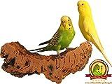"""'corcho Tabla de asiento """"Grande para pájaros + Gratis Escalada de cuerda–PREMIUM pájaro de asiento Tabla de corcho para Onda loros, Ninfa loros, loros y Co., 100% BIO y saludable akku-knabber de juguete, Pájaros aman corcho de asiento Tablas, sin herramientas en cualquier jaula fácil de fijar, fácil de limpiar, corcho natural cálida para pájaro pies, es bueno para sujeción y pico de cuidado"""