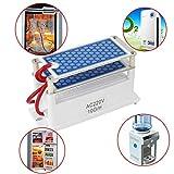 Dailyinshop 220V 7g / h Mini generatore di ozono Integrato Piastra Ceramica Aria Macchina ozonizzatore