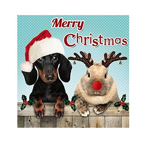 Me To You Up Close Dog Rabbit Merry Christmas Red Hat Greeting Card