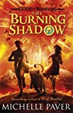 The Burning Shadow (Gods and Warriors Book 2)