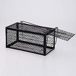 HQ's perfect store Mode Simple Cage Vivante pour Petits rongeurs, Cage piège Noire pour appâts pour rongeurs, Taille: 24.5 * 12 * 12cm Effet significatif