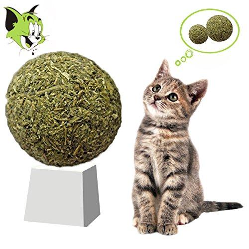 Pisky 2pcs Gioco Gatto Erba Catnip Giochi Per Gatti In Casa