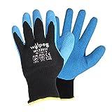 Wilpeg W1220W Kälteschutz-Handschuhe - Strickhandschuhe Latex Thermo, Winter-Handschuh - Arbeitshandschuh wasserabweisend Größe 9 - VPE = 6 Paar