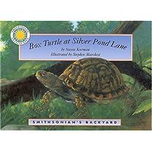 Box Turtle at Silver Pond Lake