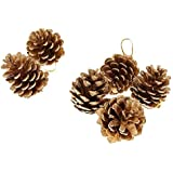 Decorative Buckets:christmas Decorations : CHRISTMAS TREE PINECONE : GOLDEN PINECONE |CHRISTMAS TREE HANGING PINECONE DECORATION |PACK OF 6| Christmas Tree Decorations |christmas Tree Hanging| Christmas Décor | Christmas Tree Ornaments