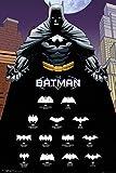 POSTER STOP ONLINE Batman-DC Comics Poster/Impression (The Evolution of The Bat-Logo) (Taille: 61x 91,4cm) (par Poster Stop en Ligne) Unframed sans Cadre