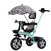 MC-F Kids Tricycle, with Sun Canopy, Back Storage and Removable Parent Handle, Children 3 Wheel Pedal Bike, for 1-6 Years Kids and Toddlers,Blue