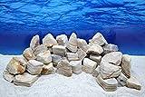 Acquario decorativo pietre naturali in bianco rocce pietre Rückwand n. 59