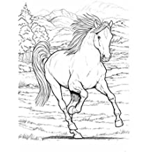Wonderful World of Horses Coloring Book (Dover Coloring Books) (Dover Nature Coloring Book)