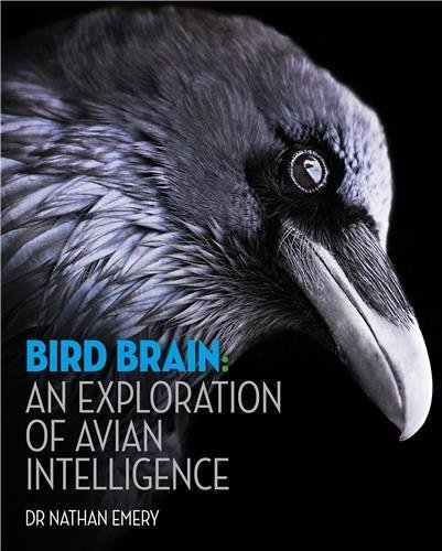 Bird Brain: An exploration of avian intelligence by Nathan Emery (2016-08-04)