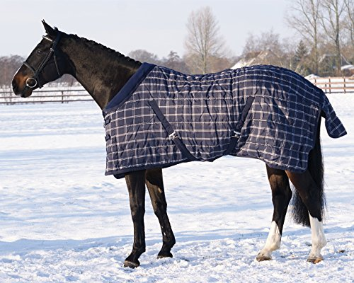 QHP Stalldecke 300 g Füllung Stripe Fleecekragen Kreuzg. Schweiflatz Winter 2017 (135 cm, Blau Kariert)