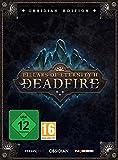Pillars of Eternity II: Deadfire Obsidian Edition (PC) Bild