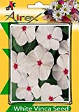#6: White Vinca (Summer) Flower Seed (Pack Of 25 Seed Per Packet) BY AIREX