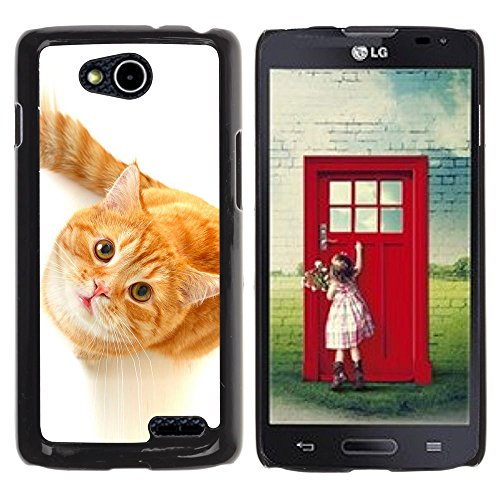 DREAMCASE Hart Handy SchutzHülle Hülle Schale Case Cover Etui für LG OPTIMUS L90 D415 - Cute Curious Orange Cat