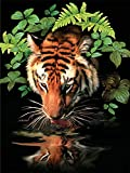 Royal & Langnickel 11 x 15 inch Thirsty Tiger Pre-Printed Paint by Number Painting Set