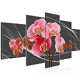 Bilder Blumen Orchidee Wandbild Vlies - Leinwand Bild XXL Format Wandbilder Wohnzimmer Wohnung Deko Kunstdrucke Rosa 5 Teilig - MADE IN GERMANY - Fertig zum Aufhängen 202952a
