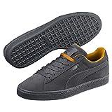 Puma Unisex-Erwachsene Suede Classic Tonal NU Skool Sneaker, Grau Iron Gate 04, 37 EU