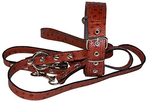 FRONHOFER Hundehalsband + Leine Set für Hunde Echtleder exklusives Leder Straussenoptik Halsband + Leine Set passend, 18283, Farbe:Rot, Größe Hundehalsband:One Size (Rote Straußenleder)