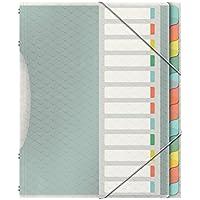 Esselte Clasificador 12 Separadores, Elástico, Multicolor, Colour'Ice, 626256