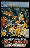 Blechschild Great Barrier Reef Australien Nostalgieschild retro Schild Australia Riff