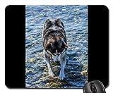 Gaming-Mauspads, Mauspad, Hund Husky Wasser Tierfreund Pet Cute Siberian