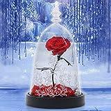 Rose Dome Forever Blume verzaubert Rose Glas Rose Geburtstag Geschenke für Freundin mit LED-Licht in einer Kuppel auf hölzernen Basis rot, Rot Rose