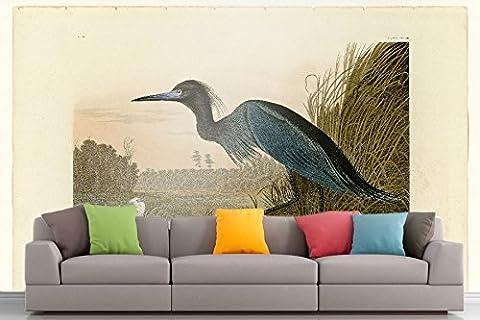 Roshni Arts®–kuratierte Art Wall Mural–Audubon (– Blue Crane–Teller 307| selbstklebend Vinyl Ausstattung Décor Art Wand–243,8x 182,9cm