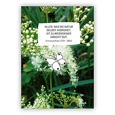 Schöne Foto Spruchkarte mit Blüten und Schmetterling: Alles, was die Natur selbst anordnet, ist in irgendeiner Absicht gut. Immanuel Kant (1724 - (Weihnachten Nachrichten Für Den Chef)