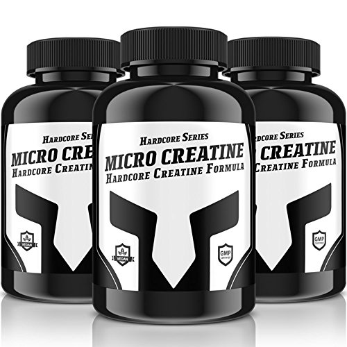 MICRO-CREATINE Hardcore Serie | 240 Tabletten für 40 Tage Kur | Bufferd Creatine Formula + Vitamin B6| Hochdosiert | (Creatine Alkalyn) | solider & trockener Muskelaufbau + Ersatz für Steroide