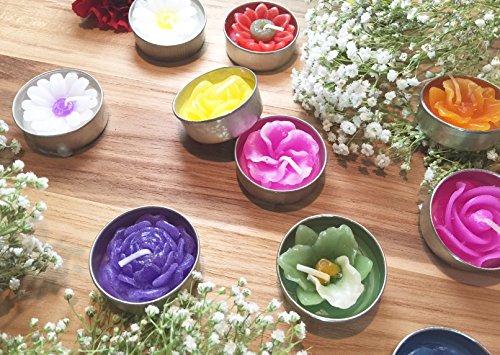 elichter, Verschiedene Blumen und Farben ()