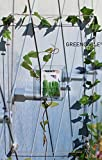 GREENCABLE Rankhilfe/Ranksystem Set 01 für Kletterpflanzen mit flexiblem Edelstahlseil zur hochwertigen Wandbegrünung