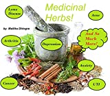 A Herbal This & A Herbal That Book: Medicine, Recipes, Healing, Fitness, Nutrition, Cleanse, Therapies, Detox: Natural Remedies For Stress, Insomnia, Thyroid, Depression, Anxiety, Flu, Colds & More!