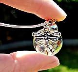 Libélula Collar de diente de león Cadena PLATA ESTERLINA Caja de regalo - Colgante de libélula collar de mariposa joyas de verano joyas de plata de ley para mujer