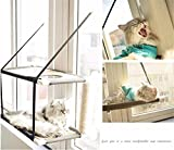 JFJL Cat Hammock,Hanging Pet Bed Window-Mounted Perch Kitty Sunny Seat Comfortable Durable Lycra Sofa With Big Suction Cups Load-Bearing To 33Lb 60 X 31Cm Black,Doublelayer