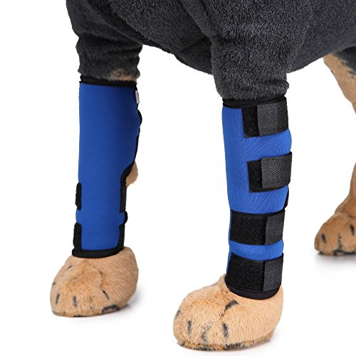 Doublehero Hunde Gelenkschutz,Handgelenk Bandage,1 Paar Hund Karpal Gelenk Bandage Pet Hunde-Hinten Bein Hock Wunden Wrap (L, Blau) (Schiene Spitze Sprunggelenk)